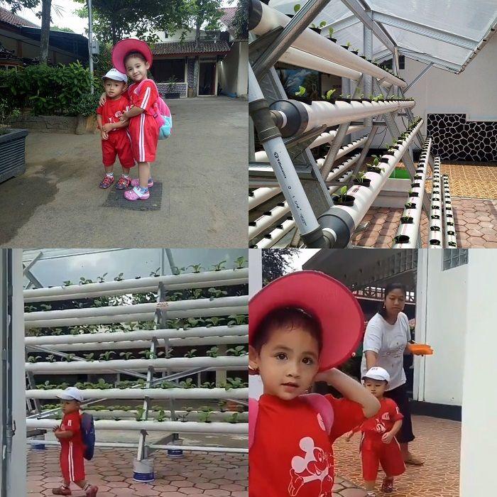 Halaman rumah Arumi Bachsin di Trenggalek, Jawa Timur