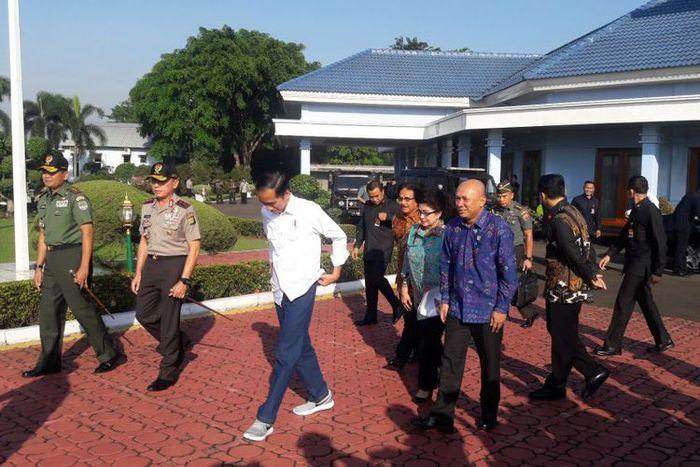 Sneakers Jokowi