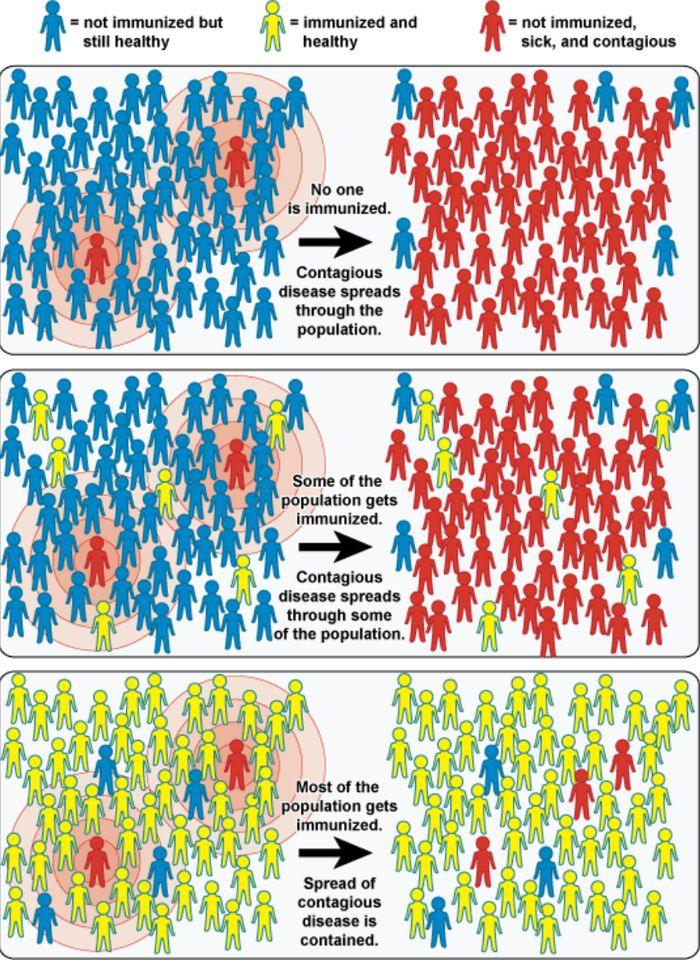 Ilustrasi herd immunity