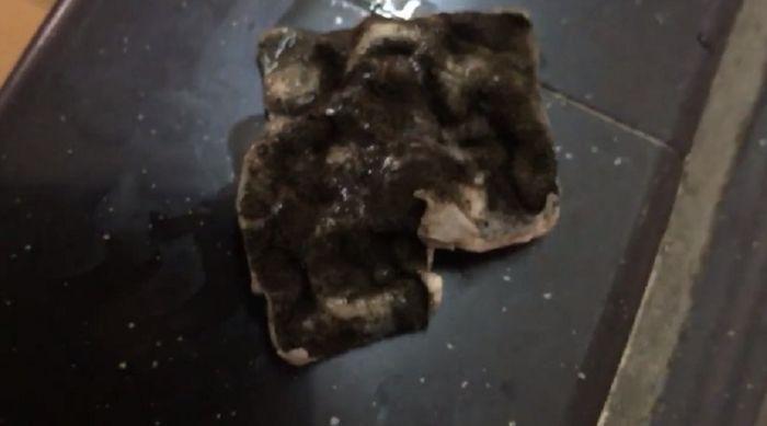 Gumpalan jamur yang ditemukan dalam susu kotak.