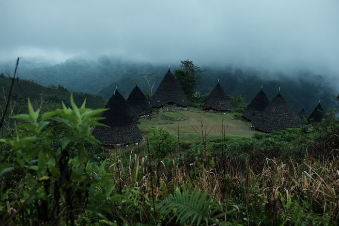 Kabut tipis menyelimuti Wae Rebo yang juga kerap disebut sebagai 'desa di atas awan'.