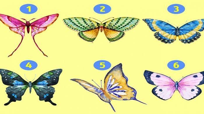 Gambar kupu-kupu yang mengungkap kepribadian Anda