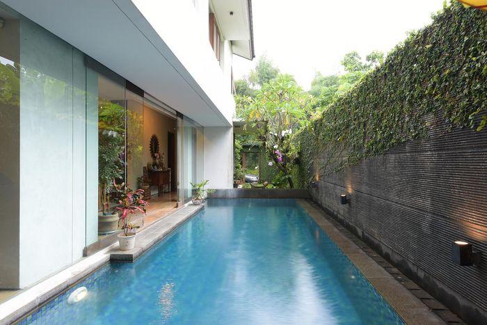 Lingkungan rumah juga dipenuhi potret alam hidup dengan taman dan pepohonan tropis.