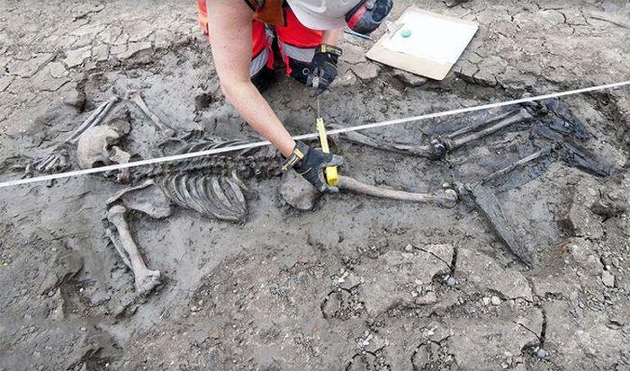 Kerangka yang ditemukan di sungai Thames.