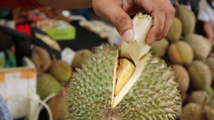 vitamin c dan lemak baik terkandung dalam durian