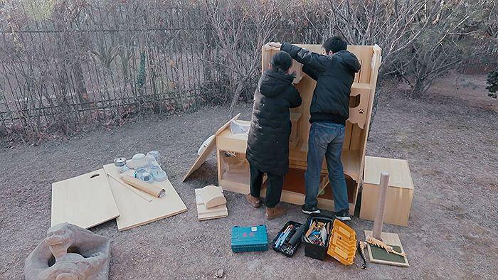Wan Xi membangun shelter kucing dengan teknologi kecerdasan buatan (AI).