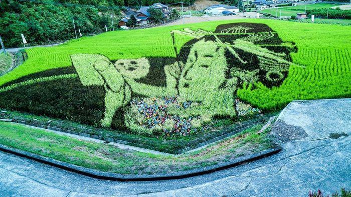 Tanbo Art atau juga yang sering disebut dengan 'Rice Paddy Art'