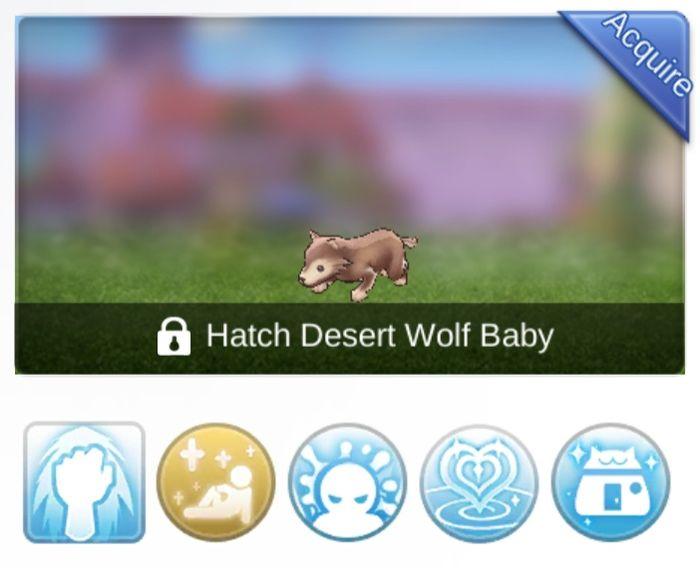Baby Desert Wolf