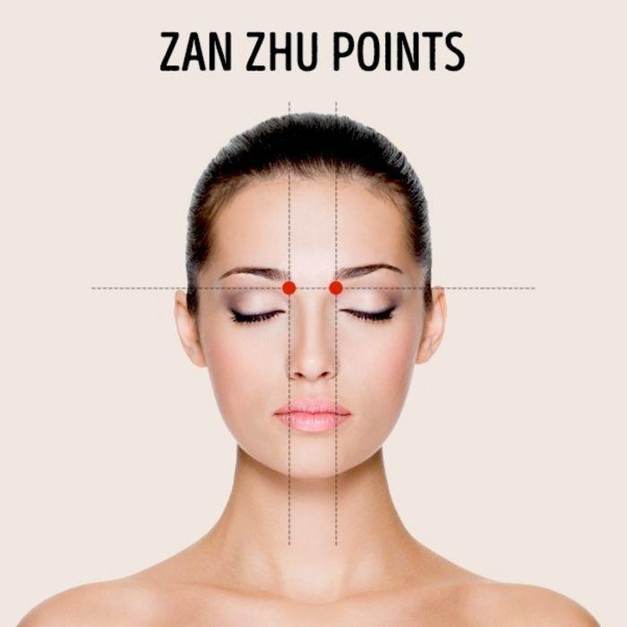 Zan Zhu
