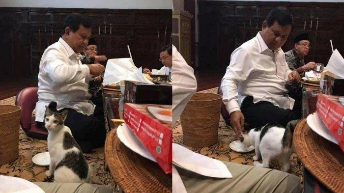 Momen Prabowo memberi makan Bobby yang sempat viral beberapa waktu lalu