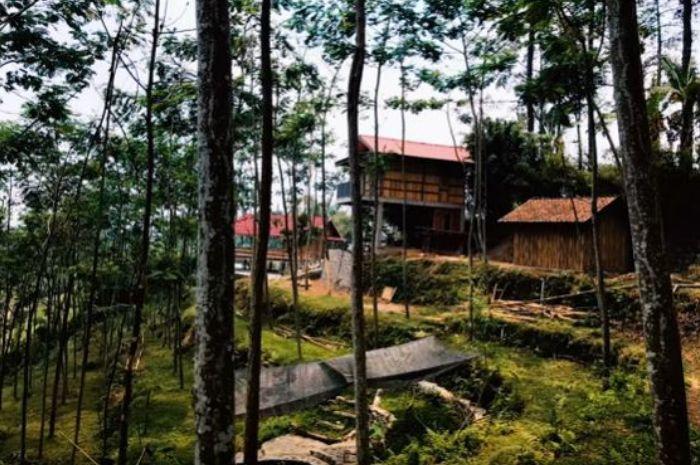 Kini Kaya Raya, Dodit Mulyanto Punya Rumah Seluas 6.000 Meter di Tengah Hutan, Dekat Peninggalan Belanda dan Ada Arena Pacuan Kuda!