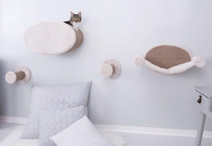 Desain interior yang bagus untuk kucing