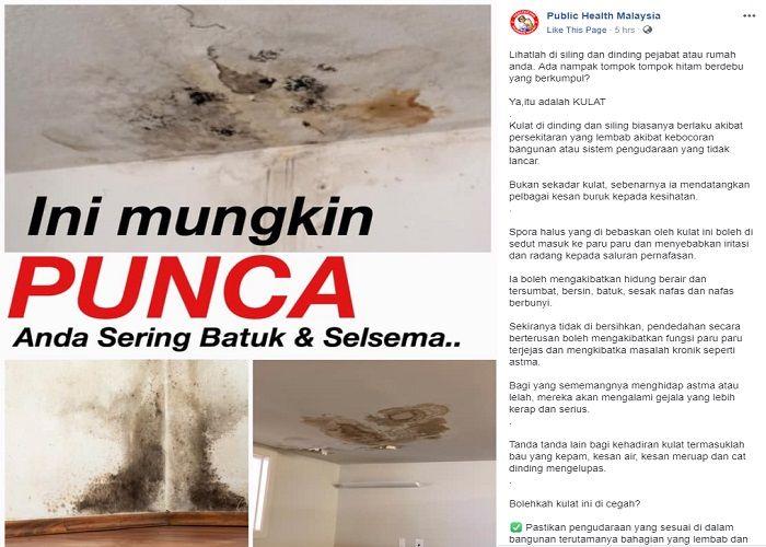 Atap rumah dan dinding bernoda adalah jamur berbahaya yang bisa terhirup oleh manusia