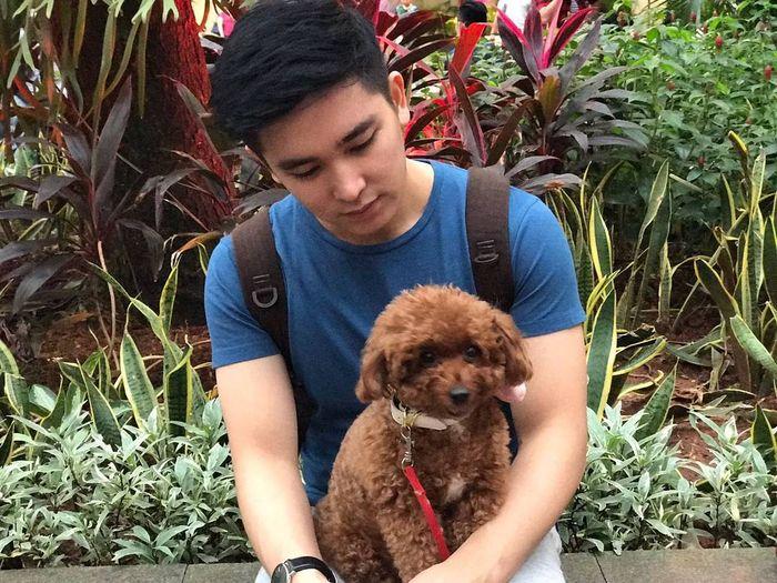 Pecinta binatang, Ervan Surya memelihara seekor anjing poodle.