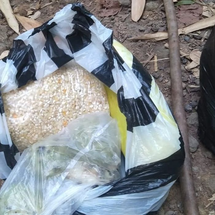 Viral, bocah SD ke sekolah bawa jagung untuk bekal jalan kaki selama 3 Jam hingga menumpang tidur di rumah warga