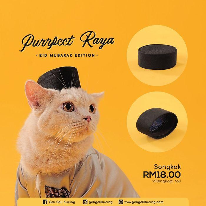 Baju Ramadan untuk Kucing