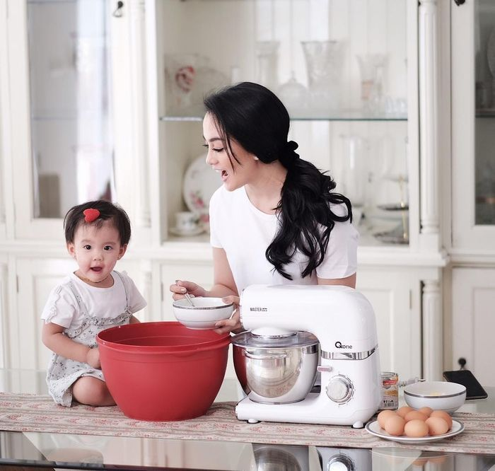 Dapur mewah artis