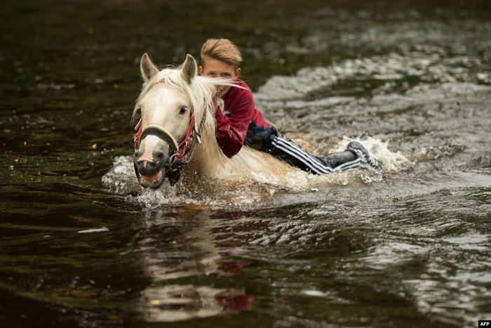 Seorang pemuda memandikan kudanya di Sungai Eden pada hari kedua Festival Tahunan Kuda Appleby di kota Appleby-in-Westmorland, baratdaya Inggris.