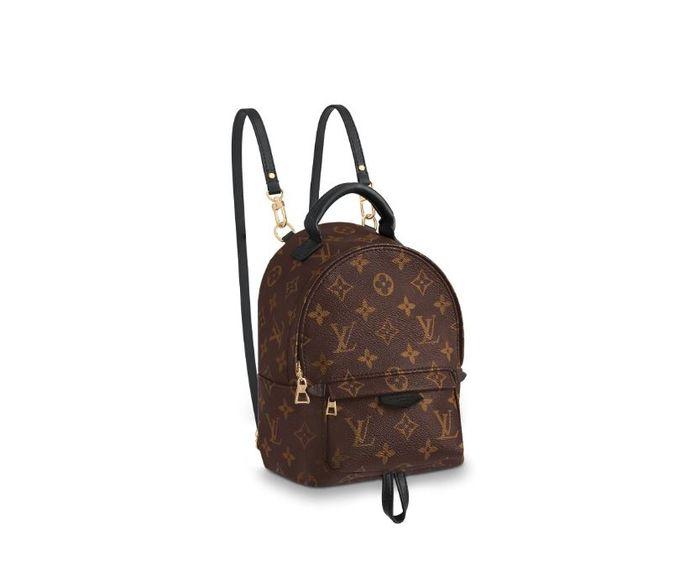 Louis Vuitton Palm Springs Backpak Mini