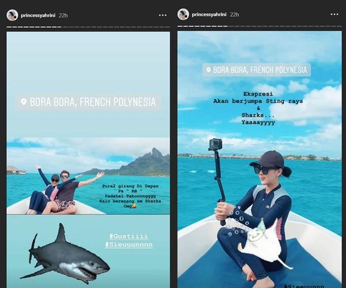 Ekspresi Syahrini diajak berenang bersama ikan hiu