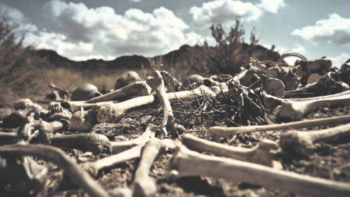 Membangkitkan Bangsa Israel Kuno dari Lembah Tulang Kering, Siapakah Leluhur Orang Yahudi?