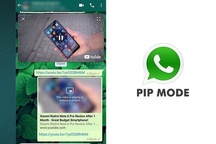 Tips WA: Fitur PiP pada aplikasi jadi salah satu cara mudah nonton Youtube sambil chattingan via WhatsApp