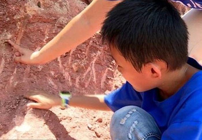 Zhang Yangzhe menemukan telur dinosaurus saat bermain di tepi timur Jembatan Dongjiang, Heyuan