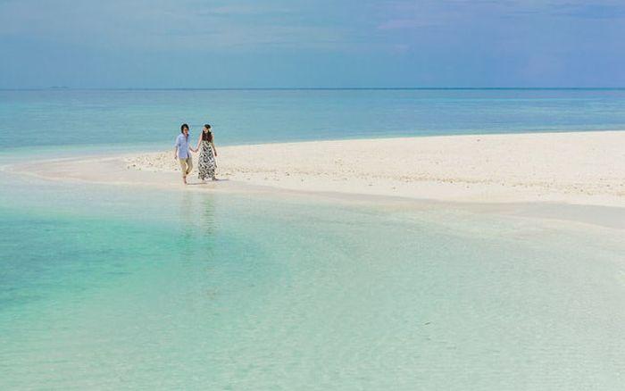 Pulau Palmerston (relocationtarget.com)