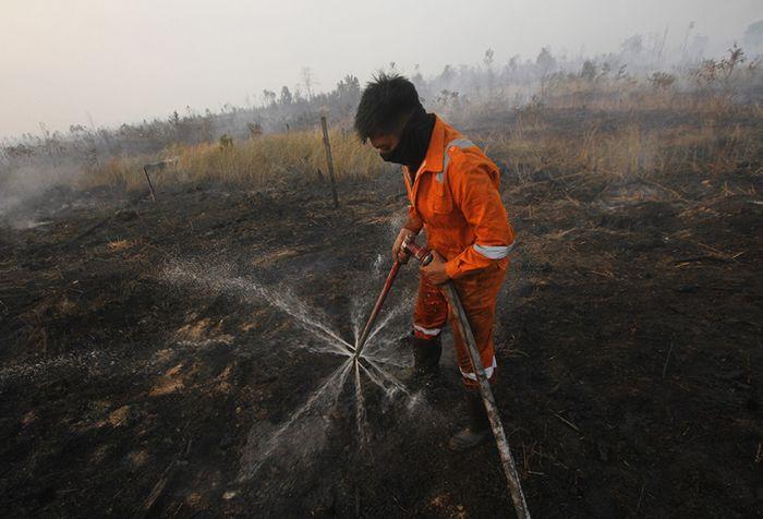Satgas Kebakaran hutan dan lahan (Karhutla) dari Dinas Kehutanan Kalsel menggunakan alat suntik gambut (Sunbut) saat berupaya memadamkan kebakaran lahan gambut di kawasan Syamsudin Noor, Banjarbaru, Kalimantan Selatan, Sabtu (14/9/2019). Berdasarkan pantauan satelit milik Lembaga Penerbangan dan Ant