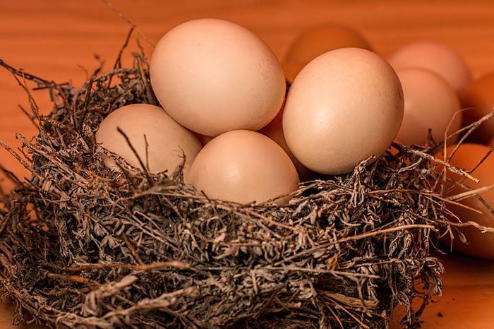 Hanya karena taruhan konyol dengan temannya, seorang pria harus kehilangan nyawa setelah makan 50 butir telur rebus