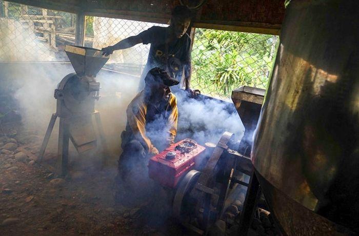 Pekerja menggiling biji kopi di rumah produksi pengolahan Kopi Tiyom, Gunung Susu, Distrik Hubikosi, Wamena, Kabupaten Jayawijaya, Papua.