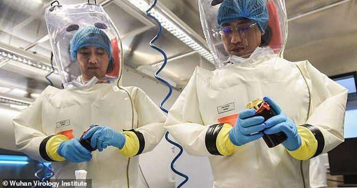 Petugas laboratorium virus Wuhan yang sedang bekerja