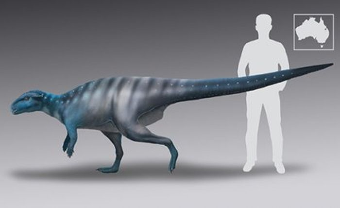 Ilustrasi ukuran dinosaurus theropoda yang jejak kakinya ditemukan dibandingkan dengan ukuran tubuh manusia.