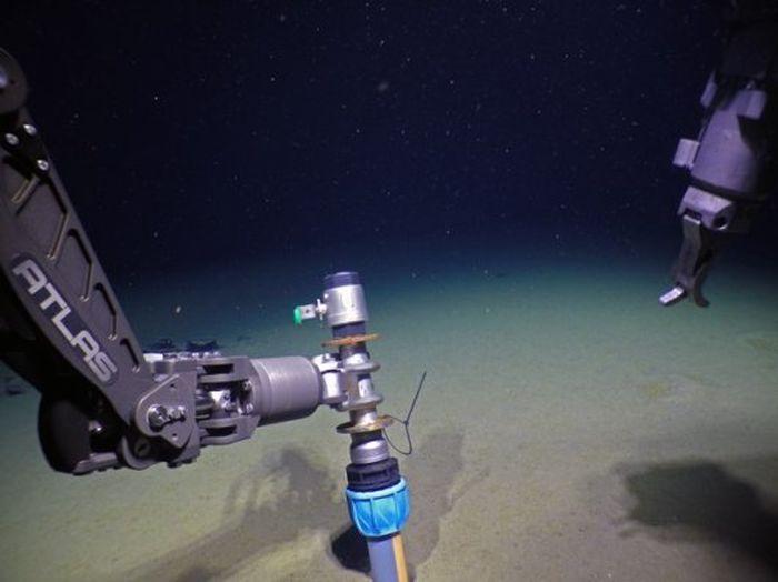 4232324032 - Bakteri Ini Ditemukan Tersembunyi di Bawah Laut Arktika yang Ekstrem
