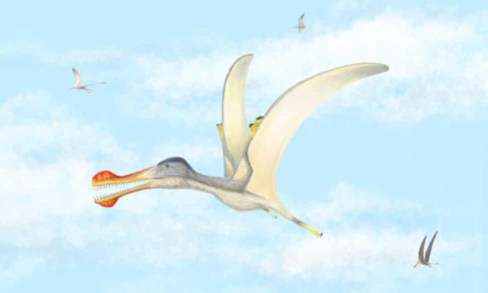 Fish-eating pterosaurs had wingspans of three to four meters.