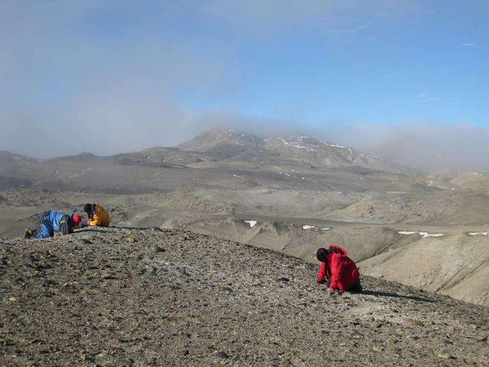 Seorang ahli paleontologi sedang meneliti situs fosil katak di pulau Seymour.