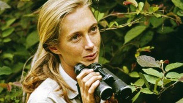 Jane Goodall muda