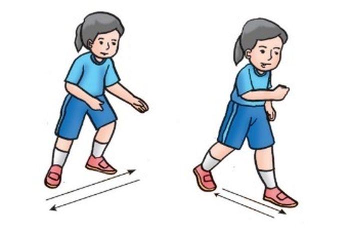 Begini Contoh Contoh Gerakan Lokomotor Non Lokomotor Dan Manipulatif Dalam Olahraga Bola Basket Semua Halaman Fotokita