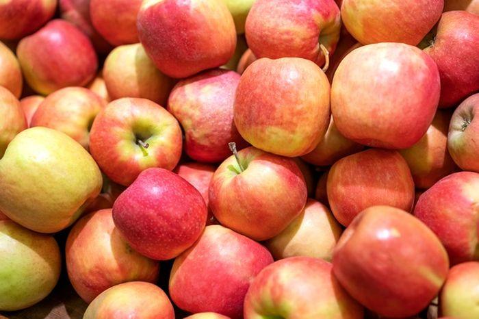 Buah apel punya segudang manfaat. Tapi, sudah tahukan kamu beberapa fakta soal buah apel, termasuk ada bagiannya yang beracun?