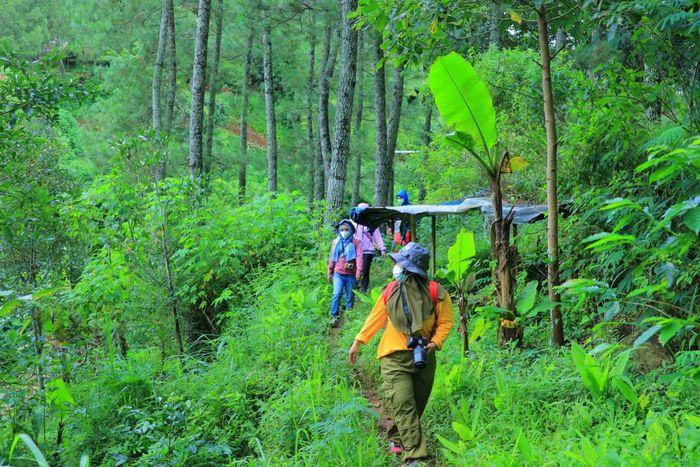 Perjalanan menuju lokasi penanaman pohon.