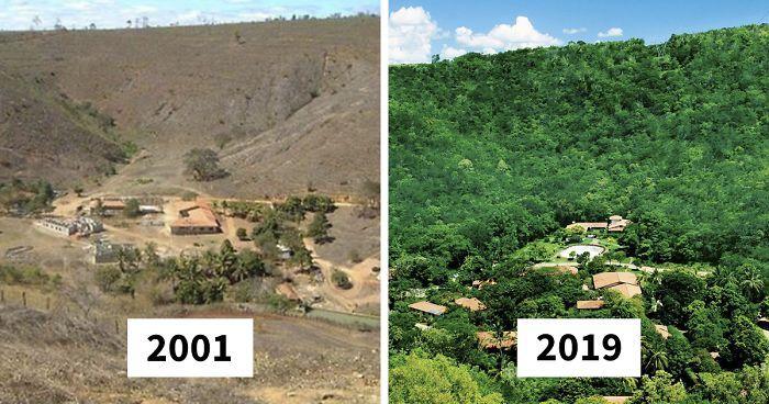 Sebuah hutan seluas hampir 7000 hektar yang sempat mati berhasil kembali 'dihidupkan' oleh Sebastião Salgado bersama istrinya.