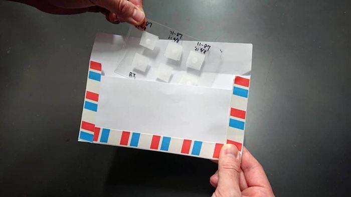 Foto ini menunjukkan bagaimana lembaran sperma dimasukkan ke dalam amplop.  Seprai dan amplop diposkan di kotak surat tanpa perlindungan apa pun.