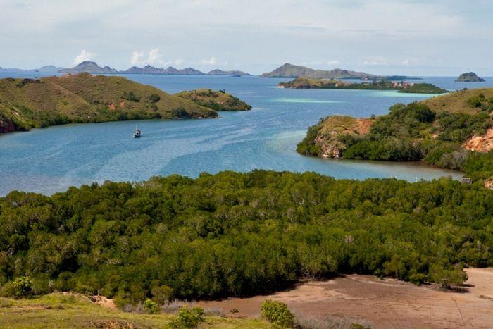 Pemandangan sebagian kawasan Taman Nasional Komodo. Kawasan yang dilindungi meliputi wilayah darat dan perairannya.