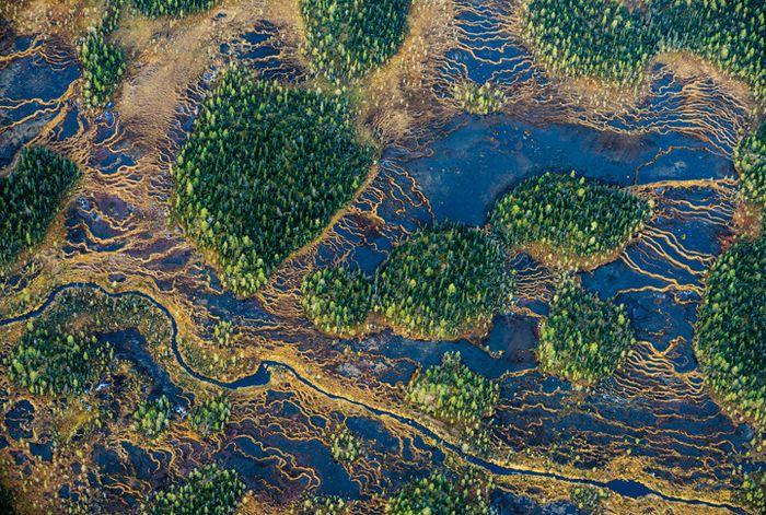 Los senderos de los glaciares se pueden ver desde arriba del Parque Nacional Mudus, donde se forman pantanos de carbón