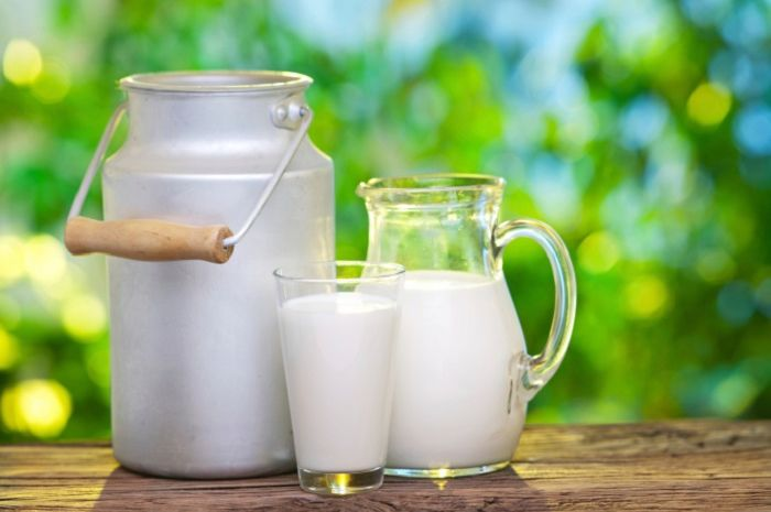 lemak trans pada susu terbukti tidak berbahaya