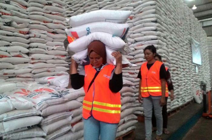 Harga beras bergejolak, pemerintah akan lakukan impor
