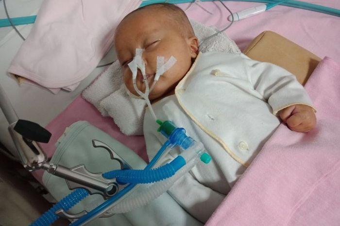Mengenal penyakit bronkopneumonia
