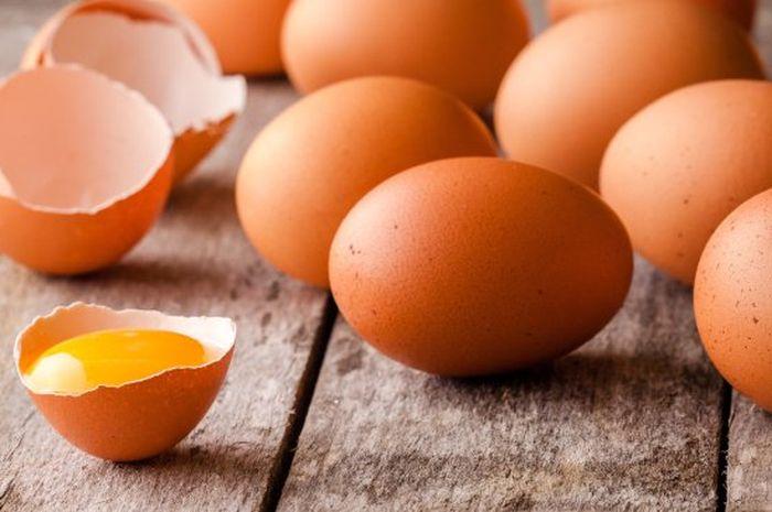 Manfaat Kulit Telur