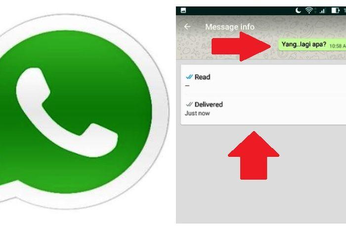 WhastApp laporan dibaca