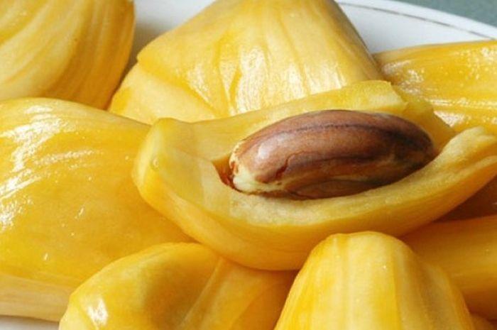 Biji buah nangka